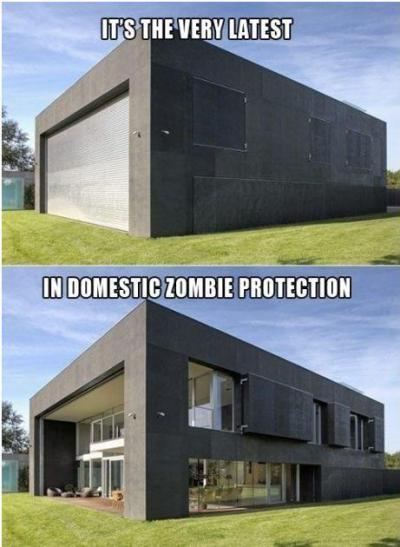 Domestic Zombie Protection :)