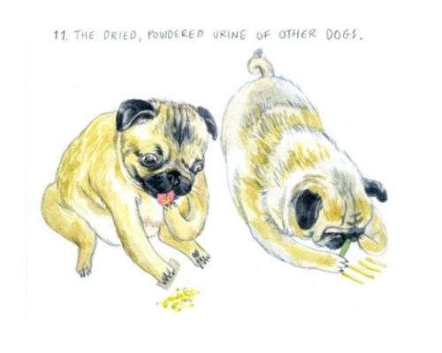 What Dogs Really Want by Lisa Hanawalt. More of what they want here.
