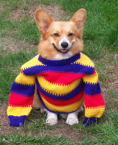 htothemk:  He loves sweaters almost as much as me