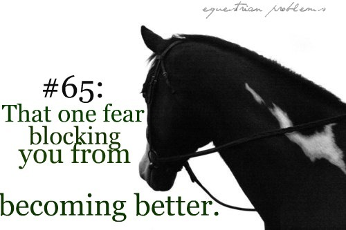 equestrianproblemss:  Equestrian Problem #65 Submitted by :i-am-imperfection