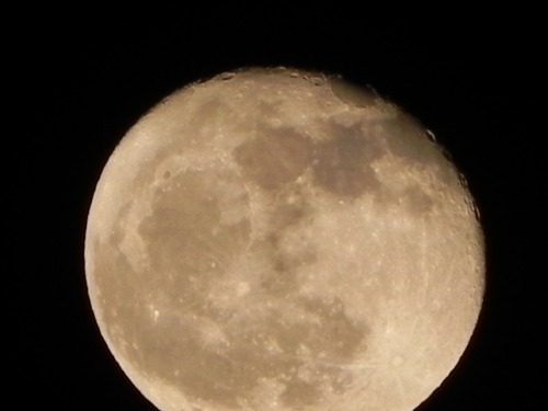 I just took this picture of our giant full moon! I love my camera, you can even see craters and Russian cosmonauts!