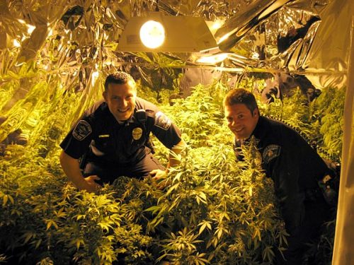 "justgethigh:  A picture that Jay Humboldt tweeted, saying ""The cops smelled that OG & came on through. So I showed my 215 card & they posed for this pic. #OnlyInCalifornia"""