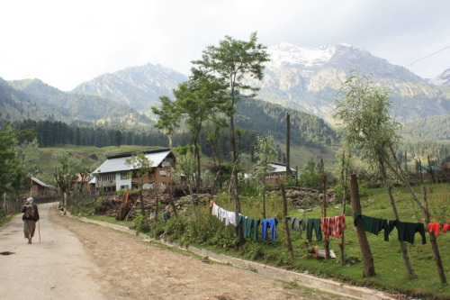 ticonderogarr:  Kashmiri clothes dryer