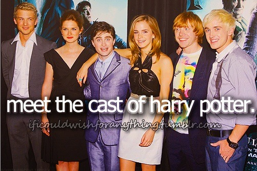 If I could wish for anything… I would wish to meet the Harry Potter cast.