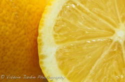 Lemon close up high resolution. Click yes, I follow back :)