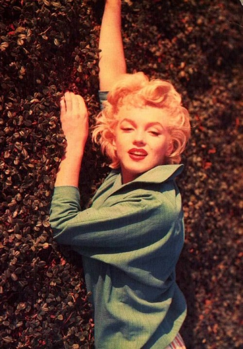 Marilyn Photo by Ted Barron, 1954
