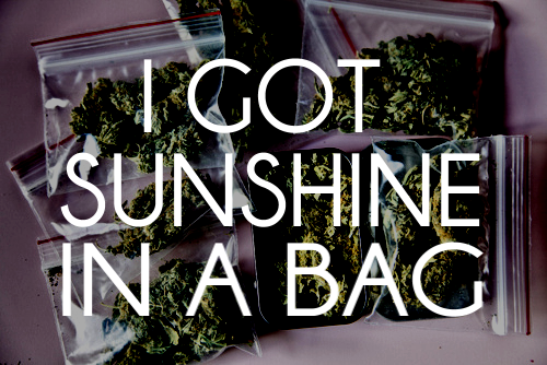 justgethigh:  I got sunshine in a bag.   (via imgTumble)
