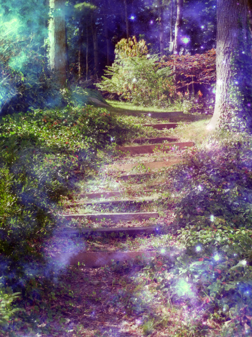 "cloud-dazed-moon-child:  ""Celestial Forest."""
