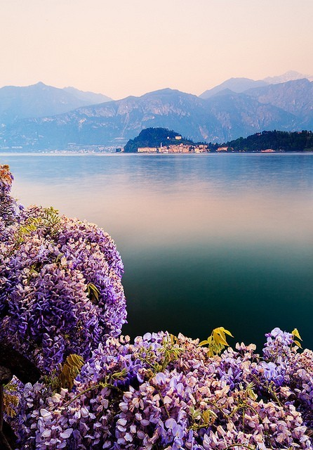 the smell of spring, Lake Como