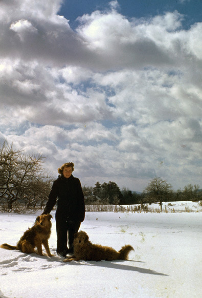 My grandmother taking a winter walk with the dogs Thunder and Lightning, circa 1942.