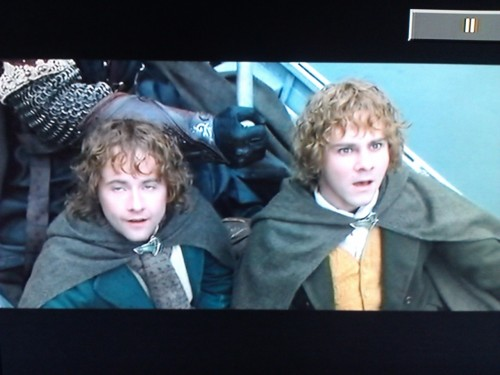 I've watched Lord of the Rings twice now and I still can't tell these two apart.