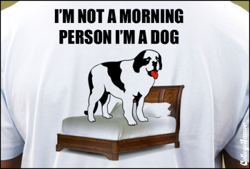Think They're Running Out of Ideas for 'Big Dogs' Shirts  [click for more]