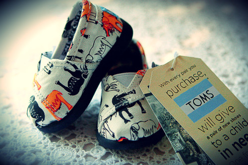 Baby Toms. So cute!