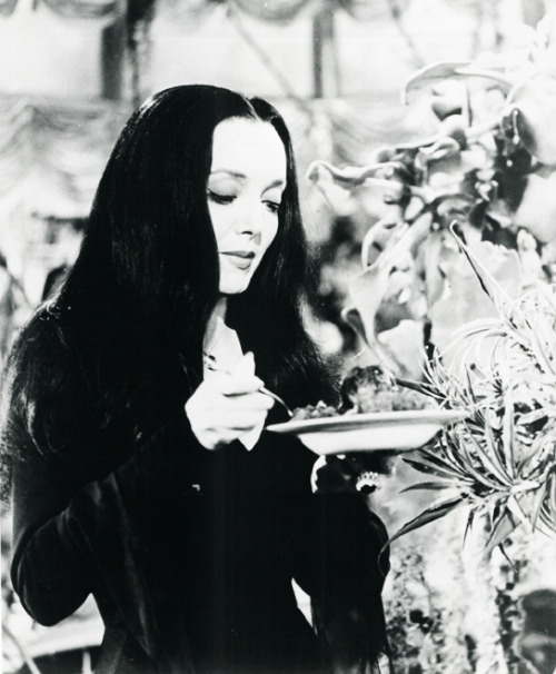 Carolyn Jones as Morticia Addams on The Addams Family (1964-1966)