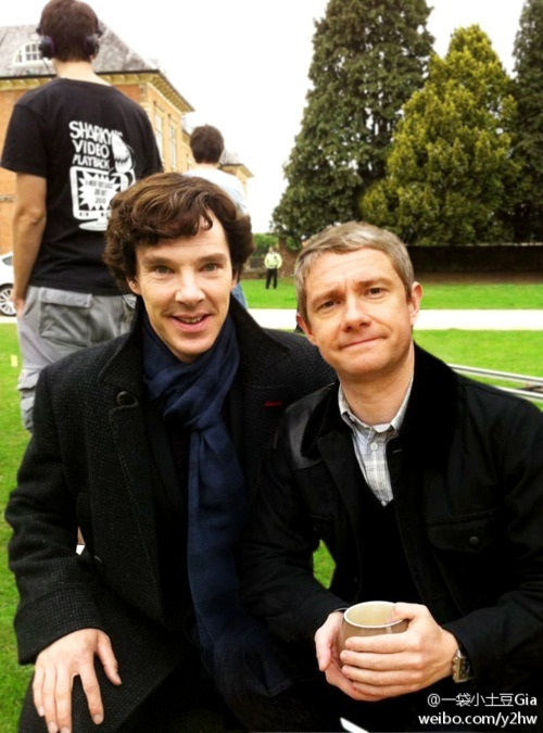 bbcsherlockftw:  crieffs:    #is this a manip or something? #do i even care? no. because it still looks adorable.  the best thing is that it's not a manip. they are naturally this adorable  BFFs.