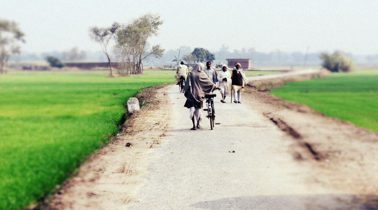 Morning Stroll Near Deoria, Bihar