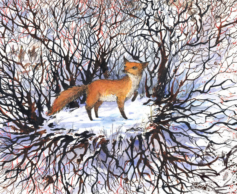 illustratosphere:  The Runaway Fox by Yevgeniya Mikhailik