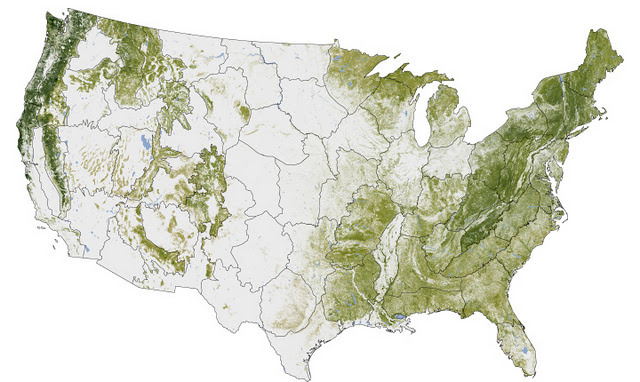 highcountrynews:  This Map Shows Where All The Trees Are In The US  NASA's Earth Observatory just released a map illustrating where all the trees are in America.  The map was created over six years by Josef Kellndorfer and Wayne  Walker of the Woods Hole Research Center (WHRC) in collaboration with  the U.S. Forest Service and U.S. Geological Survey. The dark swaths of  green represent parts of the country with the greatest concentration of  biomass. You can see dense tree cover in the Pacific Northwest as well  New England, which has been reforested after intensive logging in the  18th and 19th centuries.