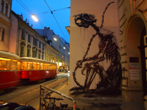 kimblasiansue:  ROA Around the World: Siebensterngasse 'Le Penseur' (Squirrel Skeleton)