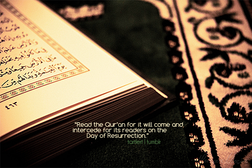 tartlert:  The Qur'an raises one's status in this life.