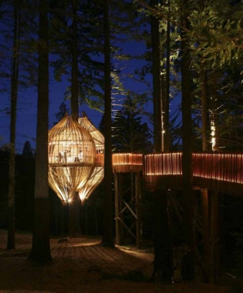 sirobe:  All Yellow:  The Yellow Treehouse Restaurant in New Zealand