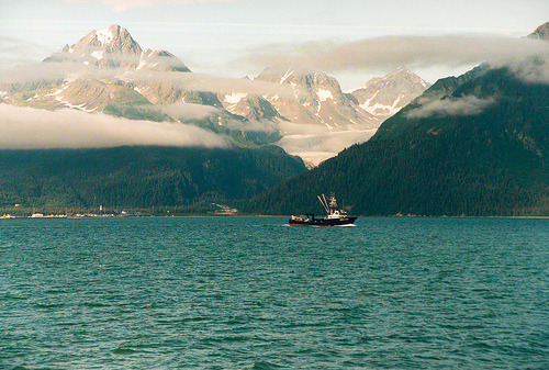 cavum:  Kenai Fjords National Park (by hoxtonboy)  miss u