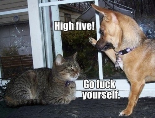 High Five! Source Daily Dawdle