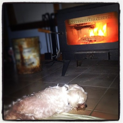 chillin' by the warm #fire with my #puppy c: (Taken with instagram)