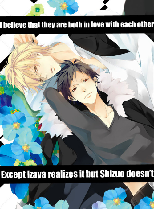 I believe that they are both in love with each other, except Izaya realises it, but Shizuo doesn't.