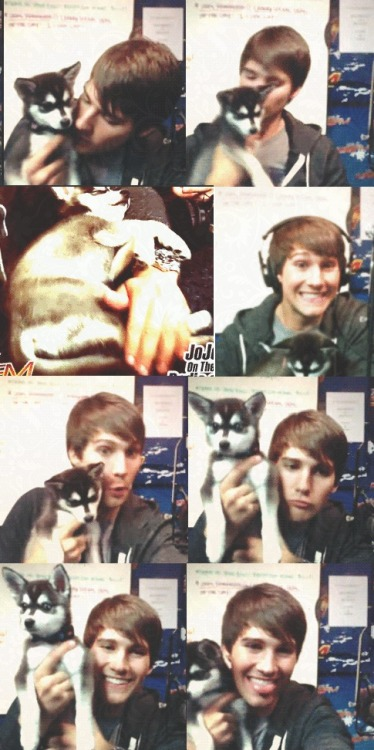 vainillacupcake:  James and Fox :D