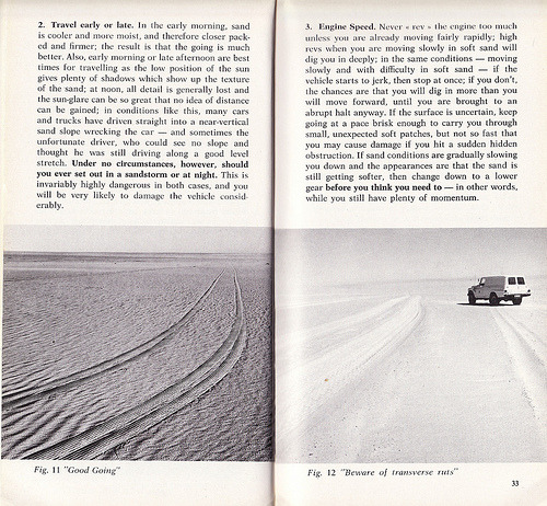 """How to Stay Alive in the Desert"" by K.E.M. Melville"