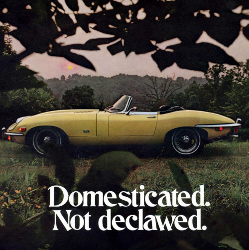 Jaguar E Type SII advertisement (1970) E-Type advertisements are a personal favorite of mine. They're all so beautifully worked, never showing too much or too little, with proper subtle luxurious color schemes which makes you know how special you could be if you owned one.