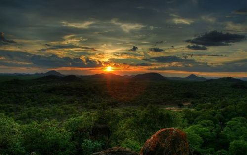 carolinafrica:  A POEM  WILDERNESS - by Ian McCallum  Have we forgotten that wilderness is not a place, but a pattern of soul where every tree, every bird and beast is a soul maker? Have we forgotten that wilderness is not a place, but a moving feast of stars, footprints, scales and beginnings? Since when did we become afraid of the night and that only the bright stars count? Or that our moon is not a moon unless it is full? By whose command were the animals through groping fingers, one for each hand, reduced to the big and little five? Have we forgotten that every creature is within us carried by tides of Earthly blood and that we named them? Have we forgotten that wilderness is not a place, but a season and that we are in its final hour?