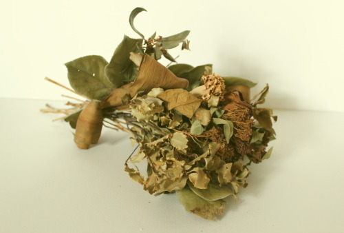2012/01 dried flower