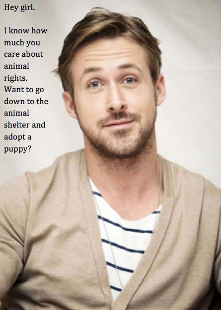 Hey girl.  I know how much you care about animal rights.  Want to go down to the animal shelter and adopt a puppy?