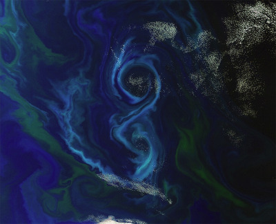discoverynews:  Phytoplankton Bloom Forms Enormous Figure 8 Plankton blooming off the Falkland Islands creates bright blue swirls in  the Atlantic.