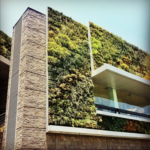 #green #wall #architecture #instagood #iphonesia #archdaily  (Taken with instagram)