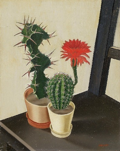 Albin Edelhoff Cactus in Bloom 1920