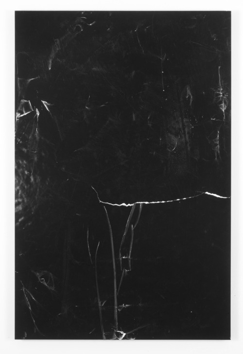 "Andrea Longacre-White, from the ""Blackouts"" series"