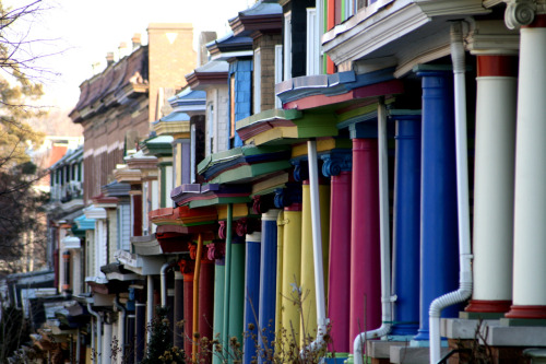 The Painted Ladies of Baltimore. They're in Charles Village, in North Central Baltimore. The neighborhood is filled with rows, culture, and college students from Johns Hopkins University on the West side of the neighborhood.