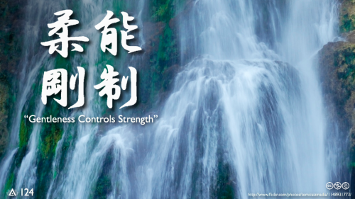 "Strategy of Lao Tzu, often used by the arts of Aikido, Judo and Jiu-Jitsu: ""Ju Yoku Go O Seisu,"" meaning ""Gentleness Controls Strength."""