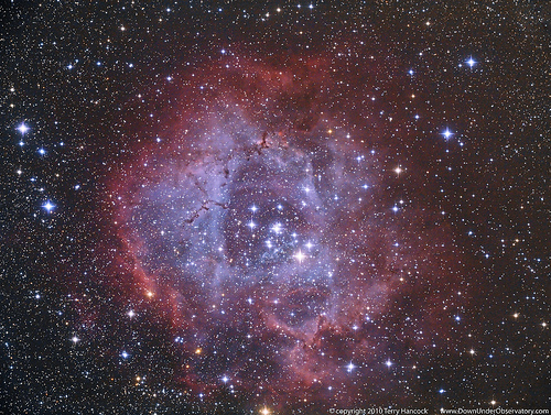The Rosette (caldwell 49) without the hydrogen alpha *Explore*By: Terry Hancock www.downunderobservatory.com  Date of Shoot: 8th December 2010Camera: Canon 5D Mark II 9 x 15 min sub exposures with flats and dark frames.Scope: TMB 130SS using WO/TMB 68mm Field Flattener.Autoguided with Orion Auto Guider on Stellarvue 10x60Mountain Instruments MI-250 MountImage Acquired using Nebulosity II, stacked with Deep Sky stacker and processed with Photoshop CS3, using Noel Carboni's tools, diffraction spikes have been added.