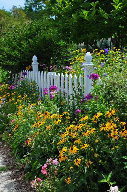 outdoorsanctuaries:  (via Three Dogs in a Garden: The Year in Bloom)