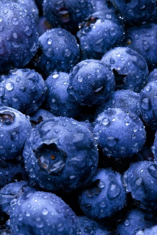 ha-ze:  blueberries