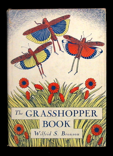 a lovely vintage book, from OldChildrensBooks.com