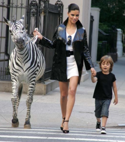 indvlge:  lushblossom:  just casually walking a zebra  ^^^^^^