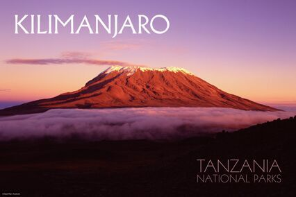 It's official. I'm climbing Mount Kilimanjaro in August this year, raising funds for The Right to Live Association in Egypt with adventure travel company Wild Guanabana.   In a region where the understanding of intellectual disability is overlooked and where people would rather sweep those issues under the carpet, the Right to Live Association (RLTA) is a rights committee founded by a group of parents and caretakers of children with mental disabilities in 1981. Since its inception, the RTLA has fought for the equal right to education, work, and life of individuals, regardless of disability. They have also helped provide information and welfare services to help them become active members of their society.  My goal is to raise 10,000 USD for the organisation. (and not come back broke, hah!) I'll be doing this by organising fundraisers throughout the course of the year, and by possibly spamming several of you, nudging you to pay. But first, I need to train. My original intent when starting this blog was to track the progress I'm making of reversing my PCOS. I wanted to document the positive changes I've made in my life with diet and exercise, but I'm going to switch that up a bit. I won't be training just for myself anymore, but to climb Kilimanjaro and help the RTLA, too! Stay tuned for updates.