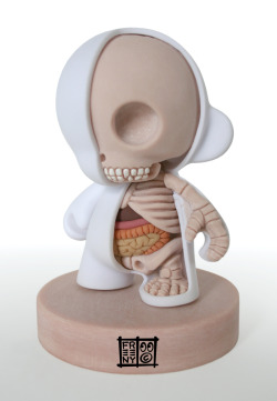 (via Munny Dissection by *freeny on deviantART)