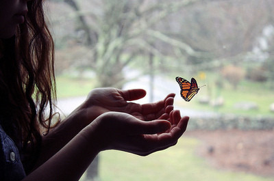(via beautiful, butterfly, child, delicate, freedom, girl - inspiring picture on Favim.com)