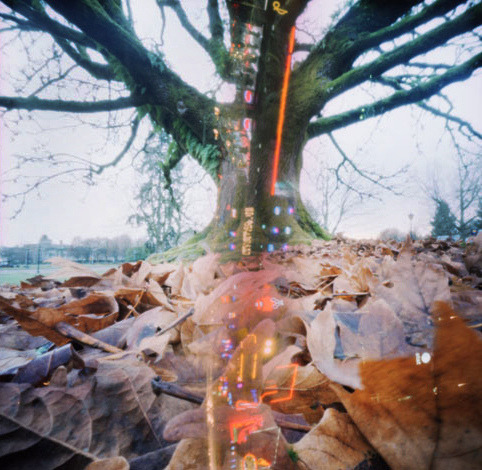 Pinhole: Seattle Via Nashville, II on Flickr.Via Flickr: f235 and f138, Fujichrome Velvia 50, 6x6, double exposures, varied time, cross processed Scanned as a positive and inverted in PS.  Part of a series of pinhole double exposures between me and JSod. Each of us shot a roll of film and mailed it to the other without disclosing what we photographed. Two visions one result, Seattle via Nashville. We've found that most of the Nashville images were washed out, but you can see hints of the Music City in some of the images. In this one, it's the Lower Broadway tourist district, an area filled with neon-fronted honky-tonks (look up Tootsies). It was a 30 minute exposure and lines up nicely with J.Sod's tree (which I really hope he goes back to shoot, because it has a beautiful structure).